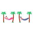 beach hammock rest relaxation in hammocks summer vector image