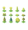 collection of trees with figures of leaf vector image