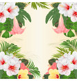frame tropical flowers hibiscus and brugmansia vector image
