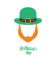 irish elf with red beard and green hat vector image