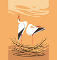 love song of storks in the nest vector image vector image