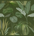 seamless tropical botanical background floral vector image vector image