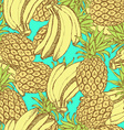 Sketch bananas and pineapple in vintage style vector image vector image