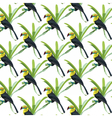 Toucan birds pattern vector image vector image