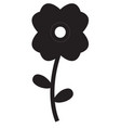flower icon on white background flower sign flat vector image