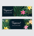 abstract natural tropical gift voucher discount vector image vector image