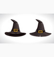 cartoon witch black hats with golden buckle above vector image