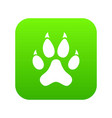 cat paw icon digital green vector image