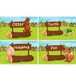 Different animals by the wooden sign vector image vector image