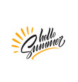 hello summer handwriting lettering isolated on vector image vector image