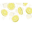 lemon slices and ice slices in the air falling to vector image vector image