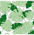 monstera leaves seamless vector image vector image