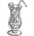 pina colada cocktail hand drawn vector image vector image