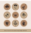 Set of icons for the sale honey 3 vector image vector image