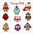 funny owls set for your design vector image