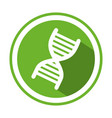 color circular emblem with dna code genetical vector image