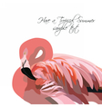 Flamingo bird isolated on white background vector image