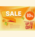banner sale special offer for autumn leaves vector image vector image