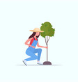 female farmer planting young tree gardener woman vector image