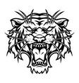 ferocious tiger head vintage template vector image vector image