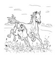 mare and foal hurry on steppe vector image vector image