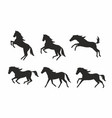 set of horses silhouettes vector image vector image