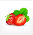 strawberry with slice vector image vector image