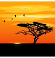 Sunset tree and birds silhouettes vector image vector image