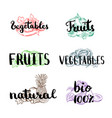 doodle handdrawn colored piles of fruits vector image
