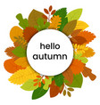 autumn leaves in circle vector image vector image