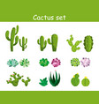 cartoon cactus with flowers vector image