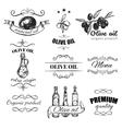 Hand Drawn Olive Oil Emblem Set vector image vector image