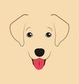 labrador retriever dog little puppy vector image vector image
