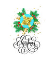 merry christmas holiday hand drawn quote vector image
