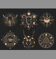 occult symbols set isolated vector image