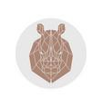 rhino head polygonal silhouette vector image vector image