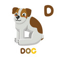 d is for dog letter c dog cute animal alphabet vector image