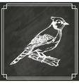 sketch bird white dark background vector image