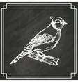 sketch bird white dark background vector image vector image