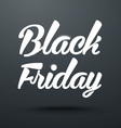 Black Friday Calligraphic Poster vector image