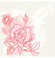 Floral Roses Background vector image vector image
