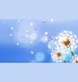 realistic dandelion white fluffy flower flying vector image