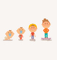 stages of the boys age vector image