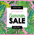 Summer sale tropical banner with palm leaves
