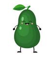 avocado in flat style isolat vector image