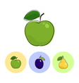 Fruit Icons Apple Plum Pear vector image vector image