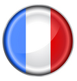 France flag button vector image