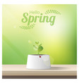 hello spring background with young sprout vector image vector image