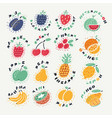 set fruits and berries in a cartoon style vector image vector image