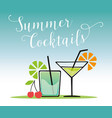 summer cocktails vector image